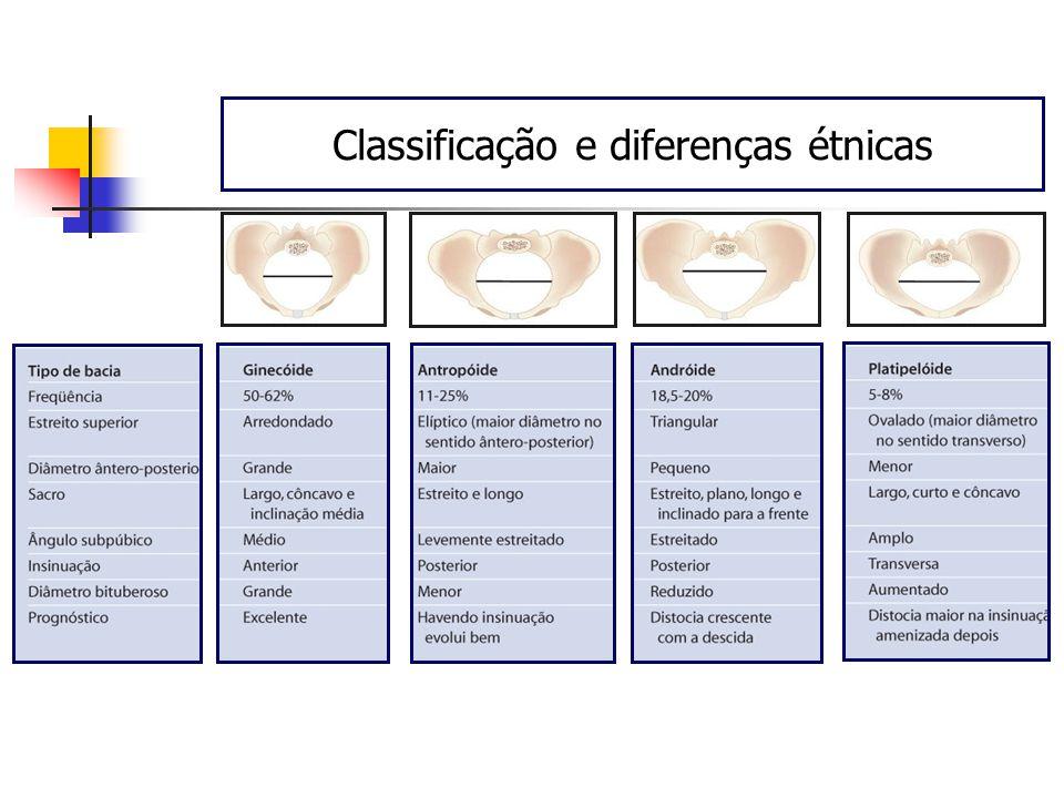 Classificação e diferenças étnicas