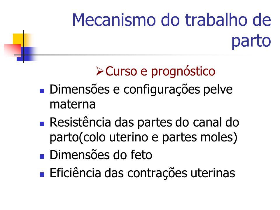 Mecanismo do trabalho de parto  Curso e prognóstico Dimensões e configurações pelve materna Resistência das partes do canal do parto(colo uterino e p