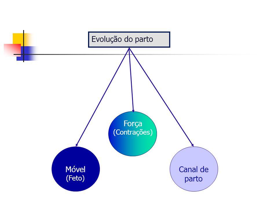 Mecanismo do trabalho de parto Modificações na posição da apresentação fetal durante a passagem no canal de parto Apresentação de vértice 95%