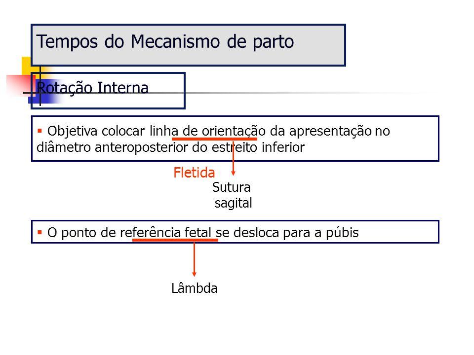 Tempos do Mecanismo de parto Rotação Interna  Objetiva colocar linha de orientação da apresentação no diâmetro anteroposterior do estreito inferior S