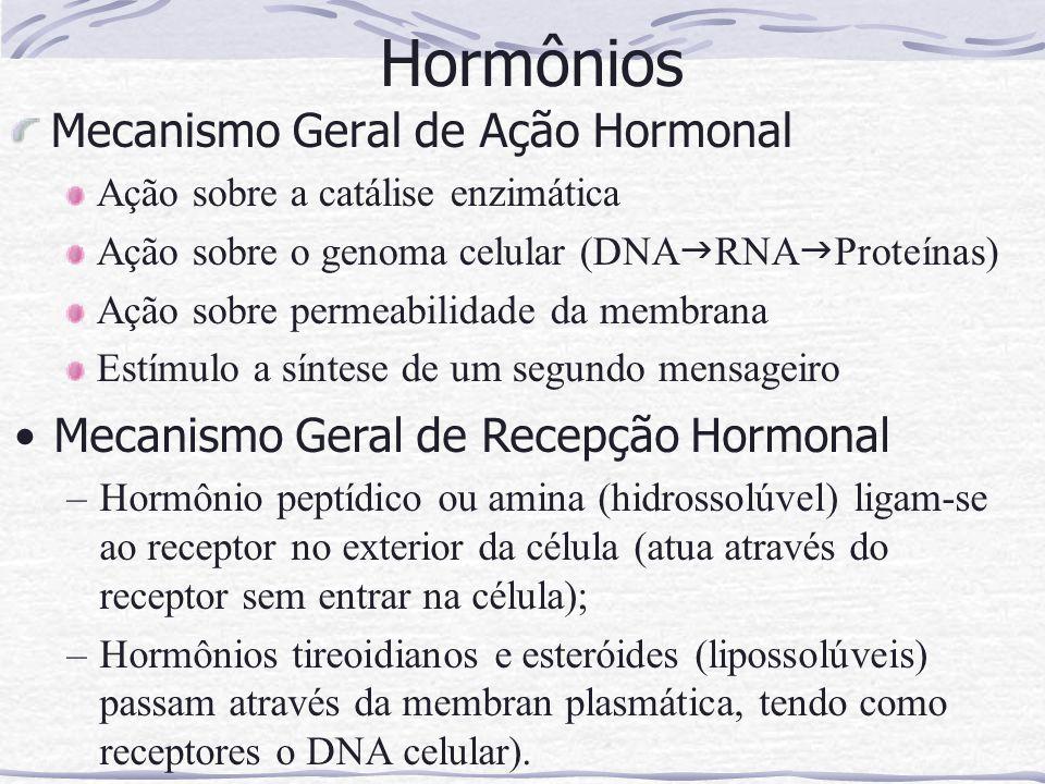 Mecanismo Geral de Ação Hormonal Ação sobre a catálise enzimática Ação sobre o genoma celular (DNA  RNA  Proteínas) Ação sobre permeabilidade da membrana Estímulo a síntese de um segundo mensageiro Hormônios Mecanismo Geral de Recepção Hormonal –Hormônio peptídico ou amina (hidrossolúvel) ligam-se ao receptor no exterior da célula (atua através do receptor sem entrar na célula); –Hormônios tireoidianos e esteróides (lipossolúveis) passam através da membran plasmática, tendo como receptores o DNA celular).