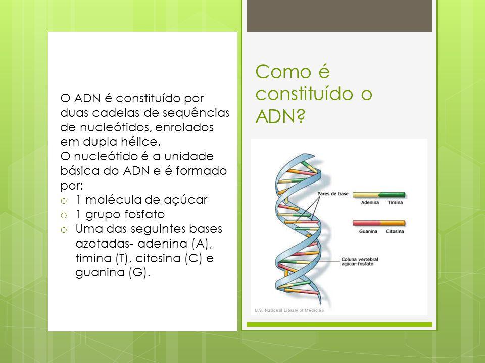 Genes e cromossomas  Gene é um segmento de ADN que determina uma característica.