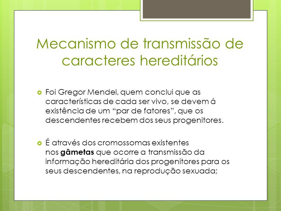 Mecanismo de transmissão de caracteres hereditários  A espécie humana possuí 46 cromossomas: 23 cromossomas existentes no espermatozóide que fazem par com os 23 presentes no óvulo.
