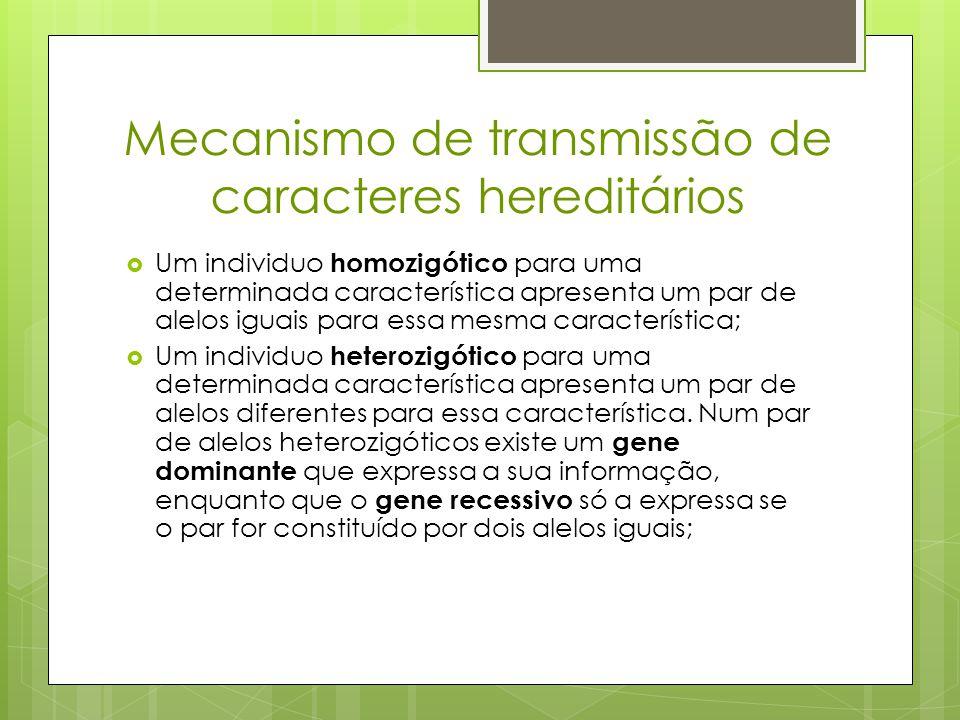Mecanismo de transmissão de caracteres hereditários  Um individuo homozigótico para uma determinada característica apresenta um par de alelos iguais para essa mesma característica;  Um individuo heterozigótico para uma determinada característica apresenta um par de alelos diferentes para essa característica.