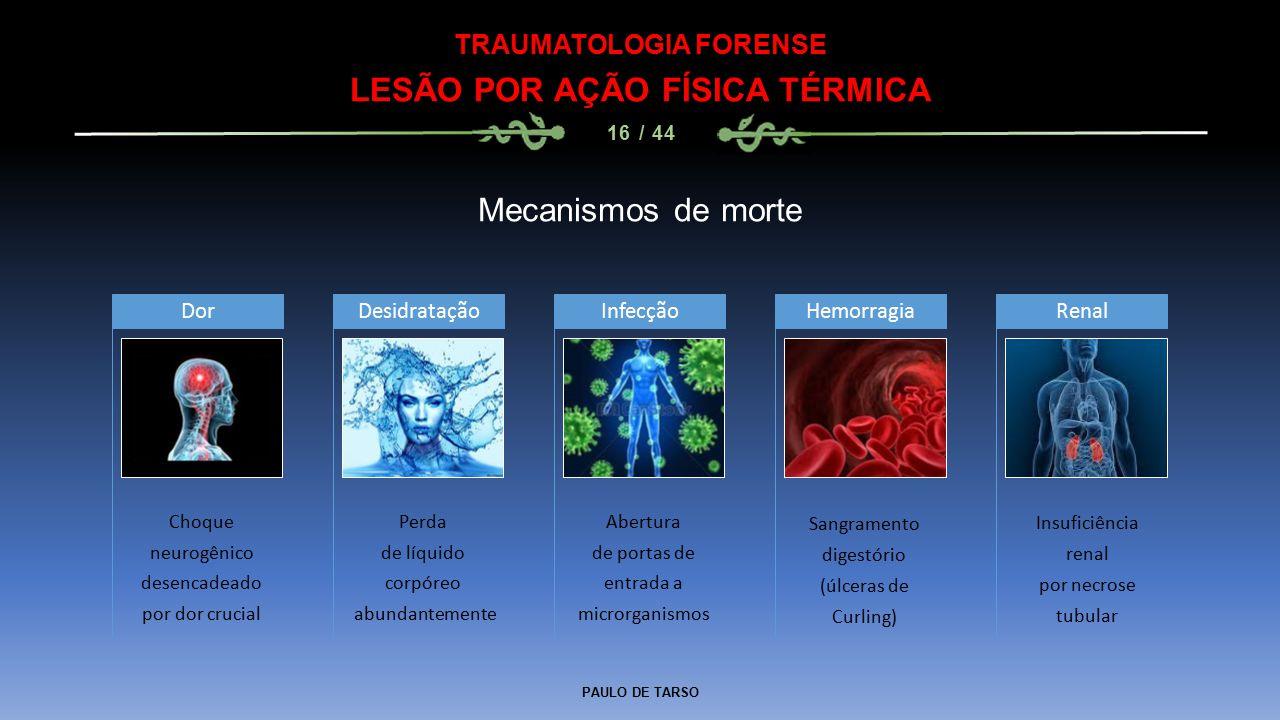 PAULO DE TARSO TRAUMATOLOGIA FORENSE LESÃO POR AÇÃO FÍSICA TÉRMICA 16 / 44 Mecanismos de morte Choque neurogênico desencadeado por dor crucial Dor Per