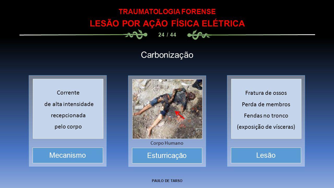 PAULO DE TARSO TRAUMATOLOGIA FORENSE LESÃO POR AÇÃO FÍSICA ELÉTRICA 24 / 44 Carbonização Esturricação Corpo Humano MecanismoLesão Corrente de alta intensidade recepcionada pelo corpo Fratura de ossos Perda de membros Fendas no tronco (exposição de vísceras)