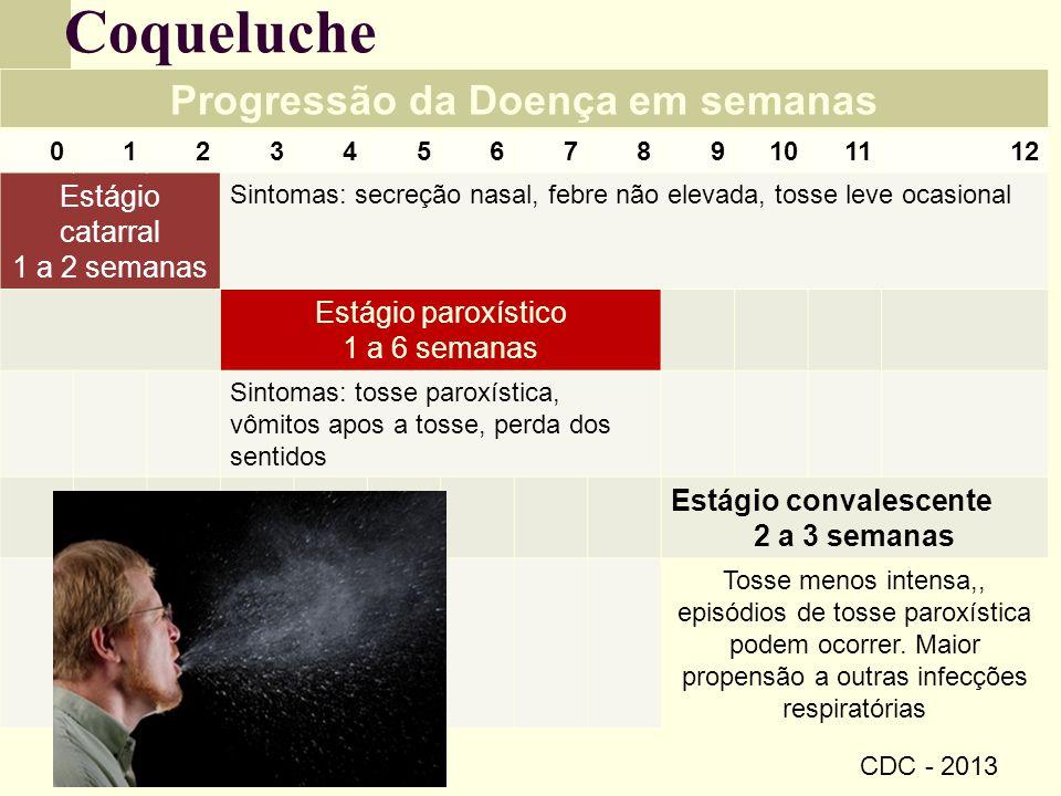 Coqueluche Progressão da Doença em semanas 0123456789101112 Estágio catarral 1 a 2 semanas Sintomas: secreção nasal, febre não elevada, tosse leve oca