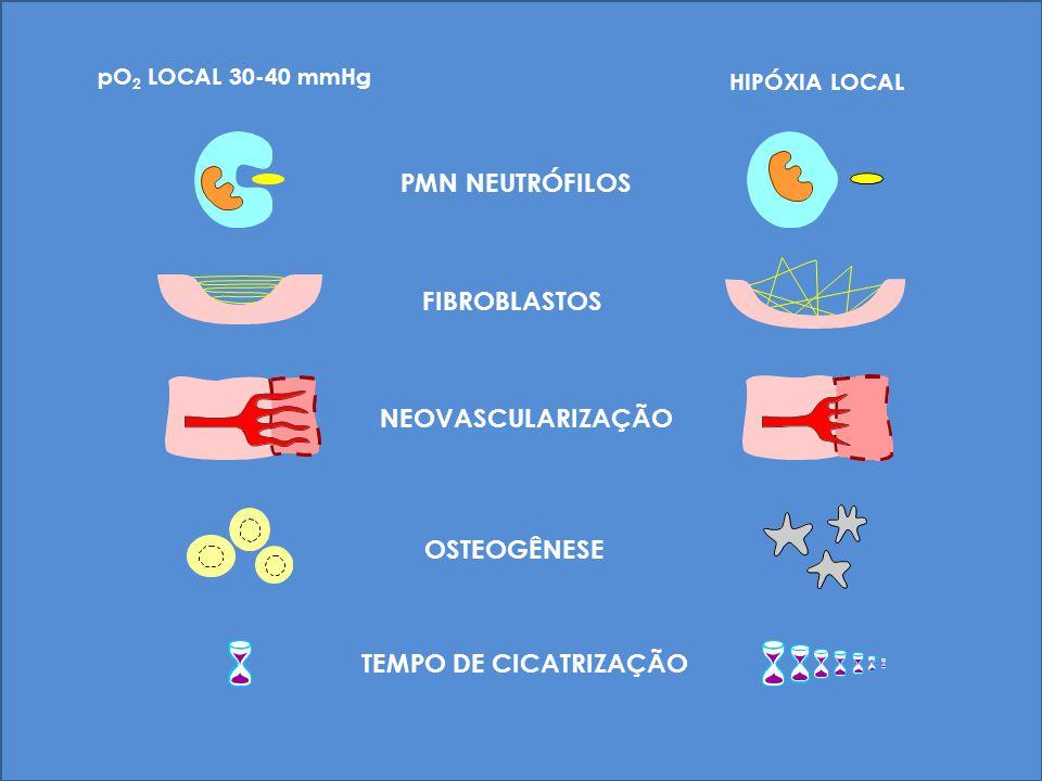 HIPÓXIA LOCAL PMN NEUTRÓFILOS FIBROBLASTOS NEOVASCULARIZAÇÃO OSTEOGÊNESE TEMPO DE CICATRIZAÇÃO pO 2 LOCAL 30-40 mmHg