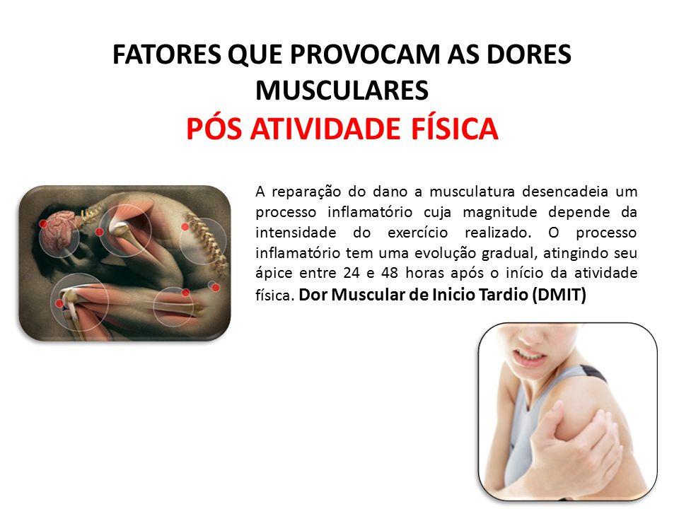 A reparação do dano a musculatura desencadeia um processo inflamatório cuja magnitude depende da intensidade do exercício realizado. O processo inflam