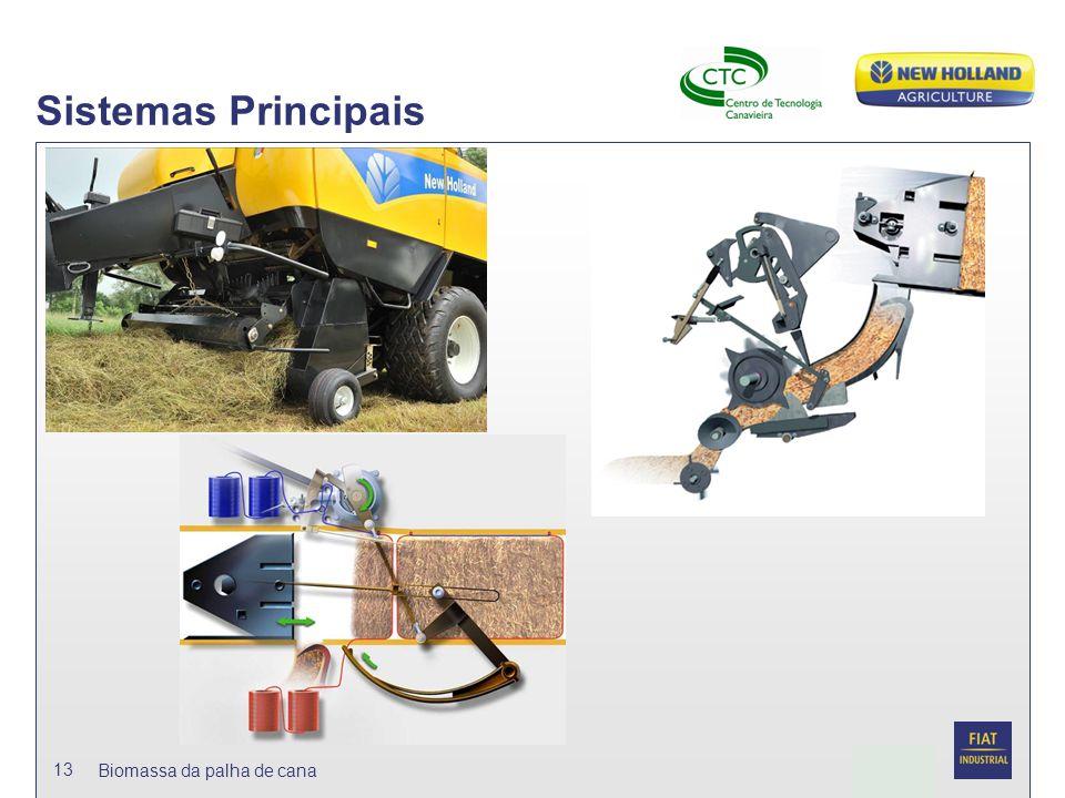 Date Biomassa da palha de cana 13 Sistemas Principais