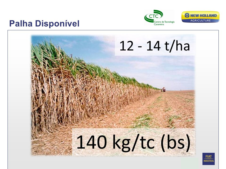 Date Biomassa da palha de cana 16 Carreta recolhedora de fardos Capacidade de 12 fardos (no ensaio 8) Carregamento sequencial automatizado Trator TM 7040 – 2000 rpm Fardos por hora – 25 a 28