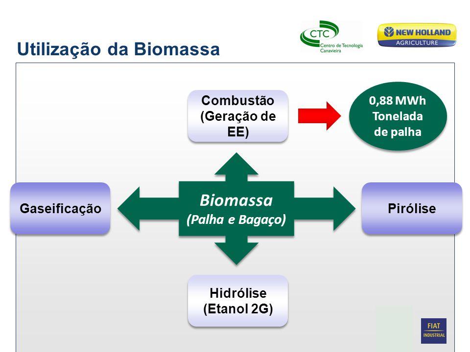 Date Biomassa (Palha e Bagaço) Biomassa (Palha e Bagaço) Combustão (Geração de EE) Combustão (Geração de EE) Hidrólise (Etanol 2G) Hidrólise (Etanol 2