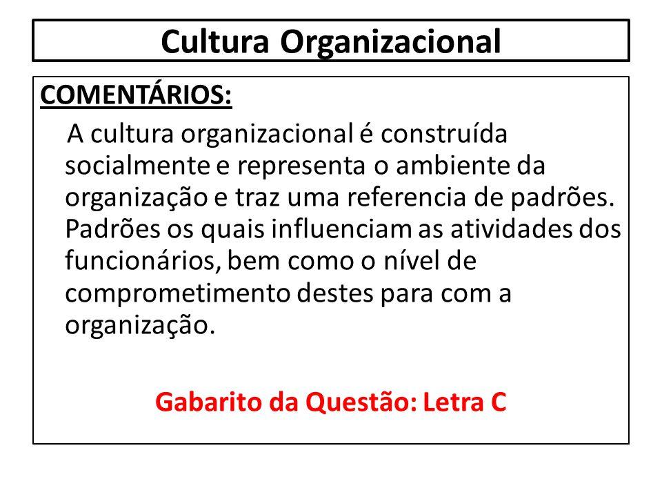 Cultura Organizacional COMENTÁRIOS: A cultura organizacional é construída socialmente e representa o ambiente da organização e traz uma referencia de