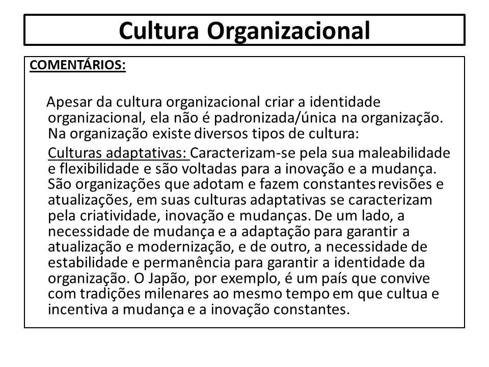 Cultura Organizacional COMENTÁRIOS: Apesar da cultura organizacional criar a identidade organizacional, ela não é padronizada/única na organização. Na
