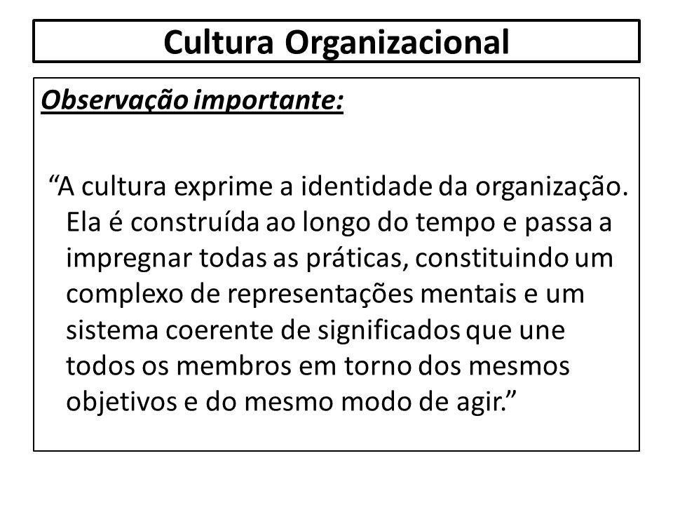 """Cultura Organizacional Observação importante: """"A cultura exprime a identidade da organização. Ela é construída ao longo do tempo e passa a impregnar t"""