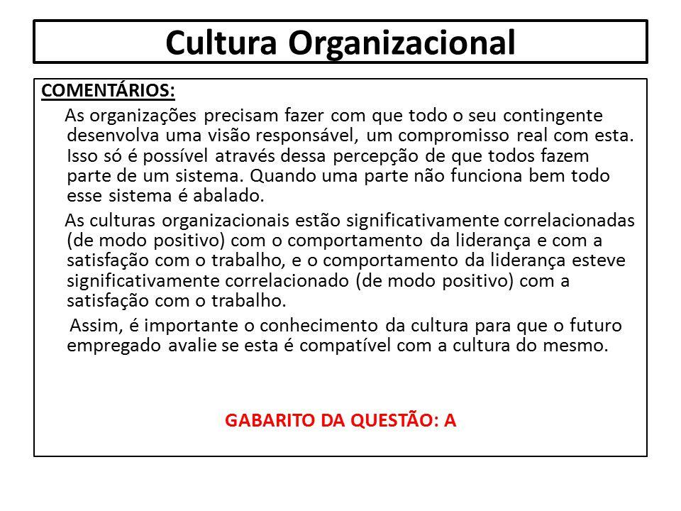 Cultura Organizacional COMENTÁRIOS: As organizações precisam fazer com que todo o seu contingente desenvolva uma visão responsável, um compromisso rea