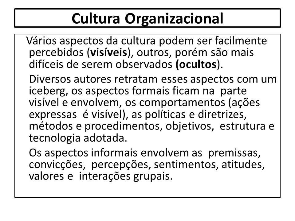 Cultura Organizacional Vários aspectos da cultura podem ser facilmente percebidos (visíveis), outros, porém são mais difíceis de serem observados (ocu