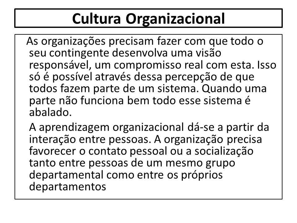 Cultura Organizacional As organizações precisam fazer com que todo o seu contingente desenvolva uma visão responsável, um compromisso real com esta. I