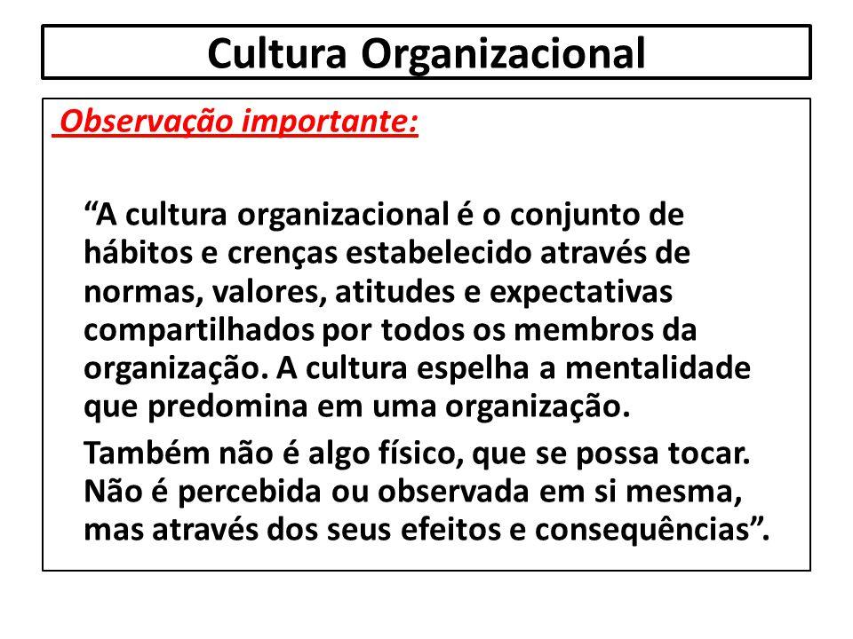 """Cultura Organizacional Observação importante: """"A cultura organizacional é o conjunto de hábitos e crenças estabelecido através de normas, valores, ati"""
