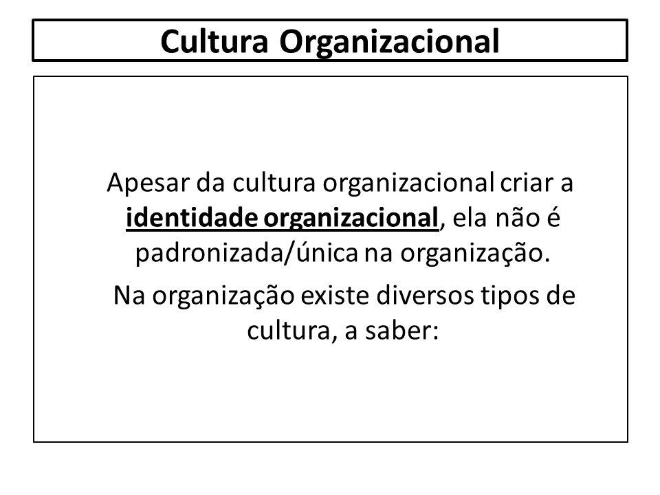 Cultura Organizacional Apesar da cultura organizacional criar a identidade organizacional, ela não é padronizada/única na organização. Na organização