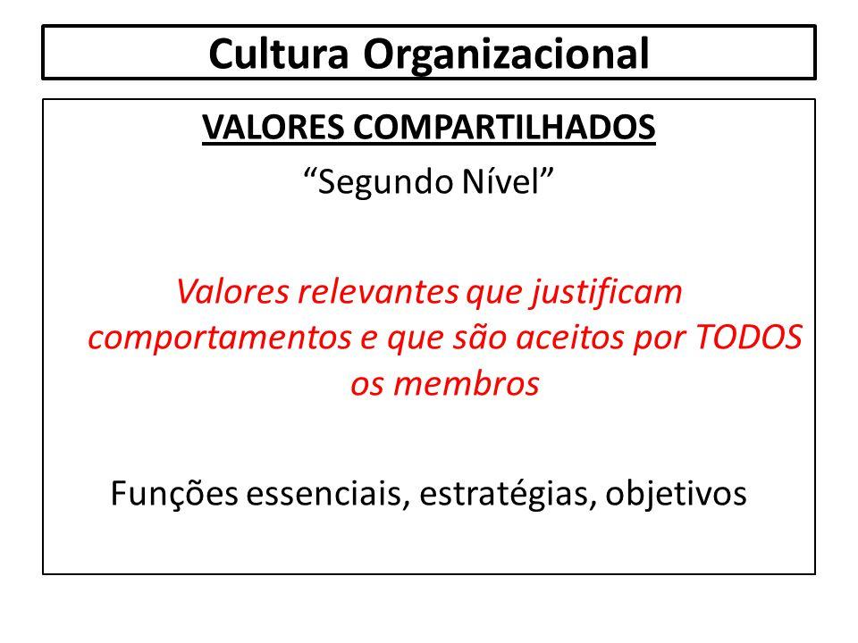 """Cultura Organizacional VALORES COMPARTILHADOS """"Segundo Nível"""" Valores relevantes que justificam comportamentos e que são aceitos por TODOS os membros"""