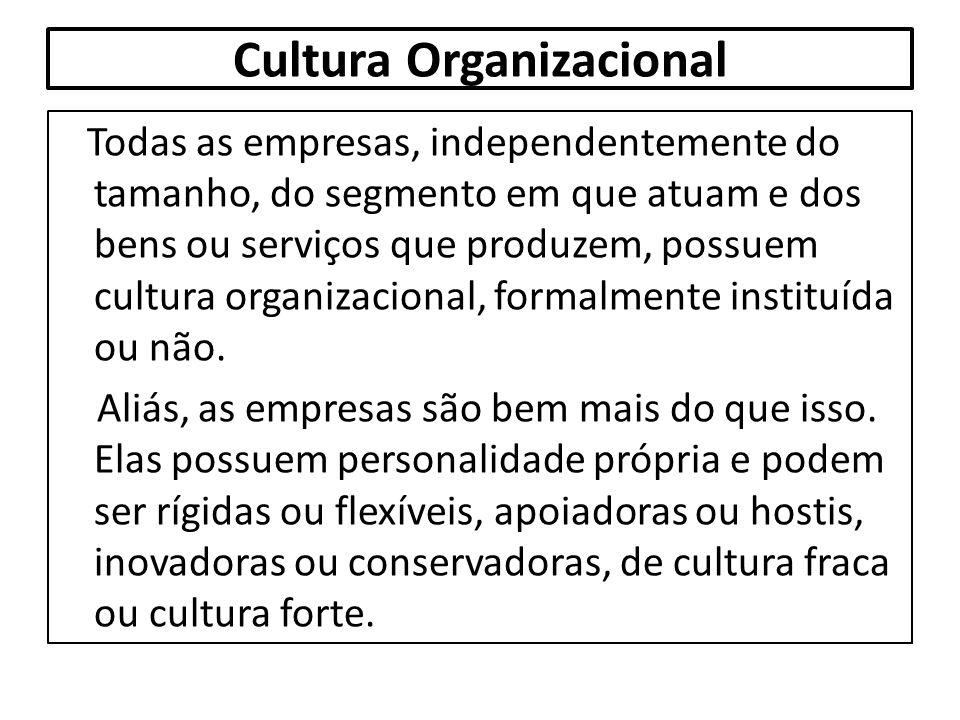 Cultura Organizacional Todas as empresas, independentemente do tamanho, do segmento em que atuam e dos bens ou serviços que produzem, possuem cultura