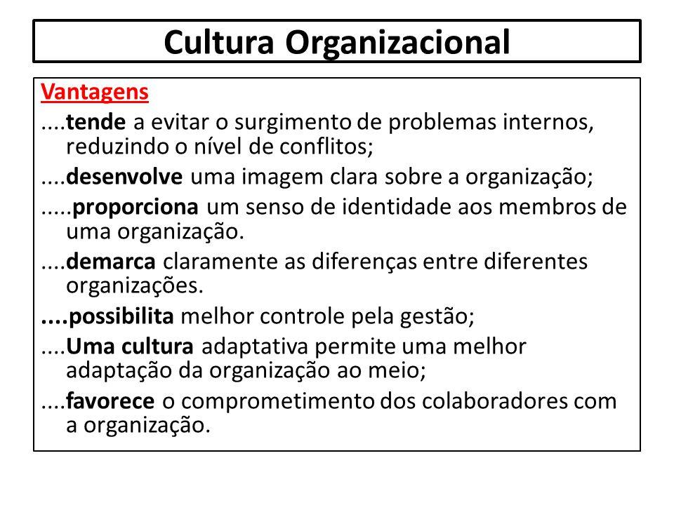 Cultura Organizacional Vantagens....tende a evitar o surgimento de problemas internos, reduzindo o nível de conflitos;....desenvolve uma imagem clara