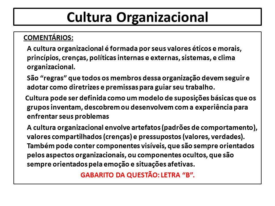 Cultura Organizacional COMENTÁRIOS: A cultura organizacional é formada por seus valores éticos e morais, princípios, crenças, políticas internas e ext