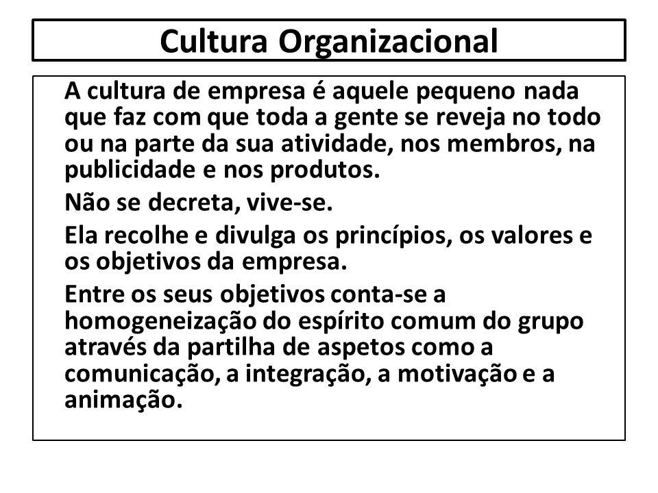 Cultura Organizacional A cultura de empresa é aquele pequeno nada que faz com que toda a gente se reveja no todo ou na parte da sua atividade, nos mem
