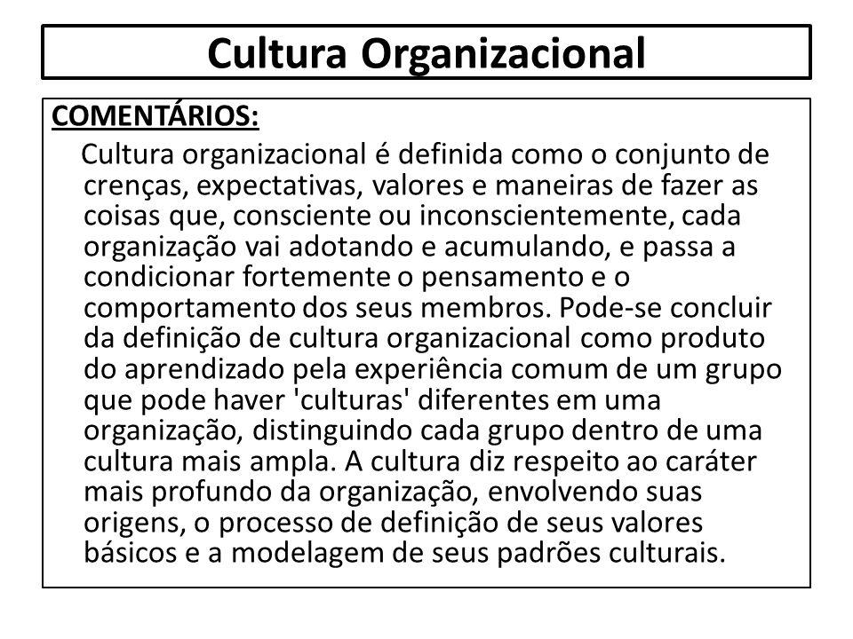 Cultura Organizacional COMENTÁRIOS: Cultura organizacional é definida como o conjunto de crenças, expectativas, valores e maneiras de fazer as coisas