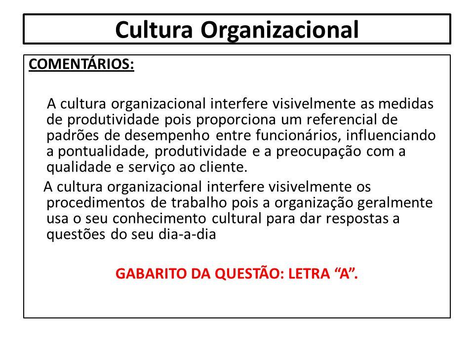 Cultura Organizacional COMENTÁRIOS: A cultura organizacional interfere visivelmente as medidas de produtividade pois proporciona um referencial de pad