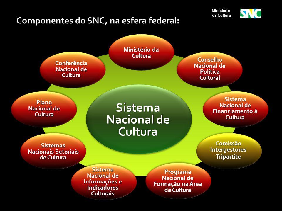 Conselho Nacional de Política Cultural Ministério da Cultura Sistema Nacional de Financiamento à Cultura Sistema Nacional de Informações e Indicadores
