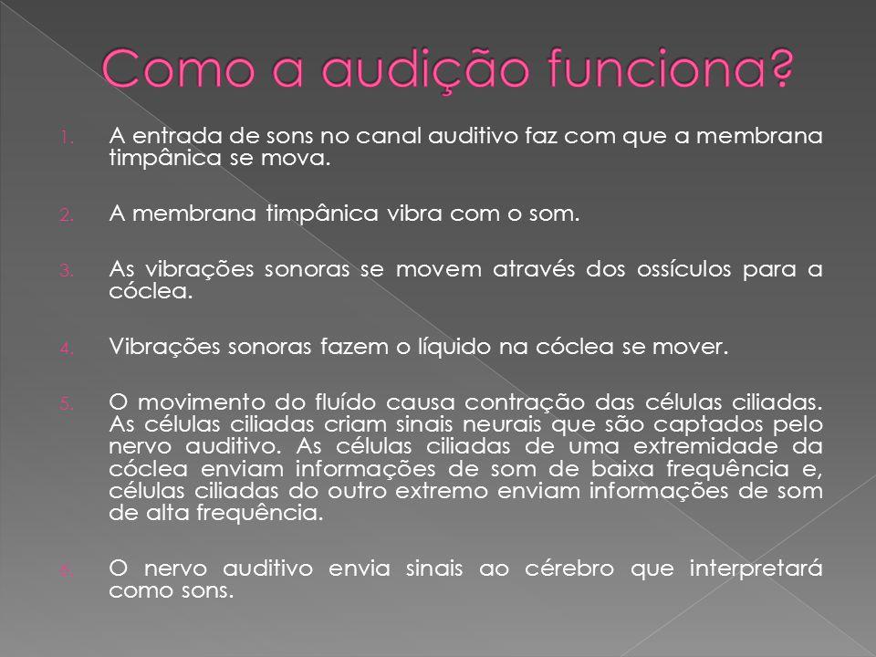 1. A entrada de sons no canal auditivo faz com que a membrana timpânica se mova. 2. A membrana timpânica vibra com o som. 3. As vibrações sonoras se m