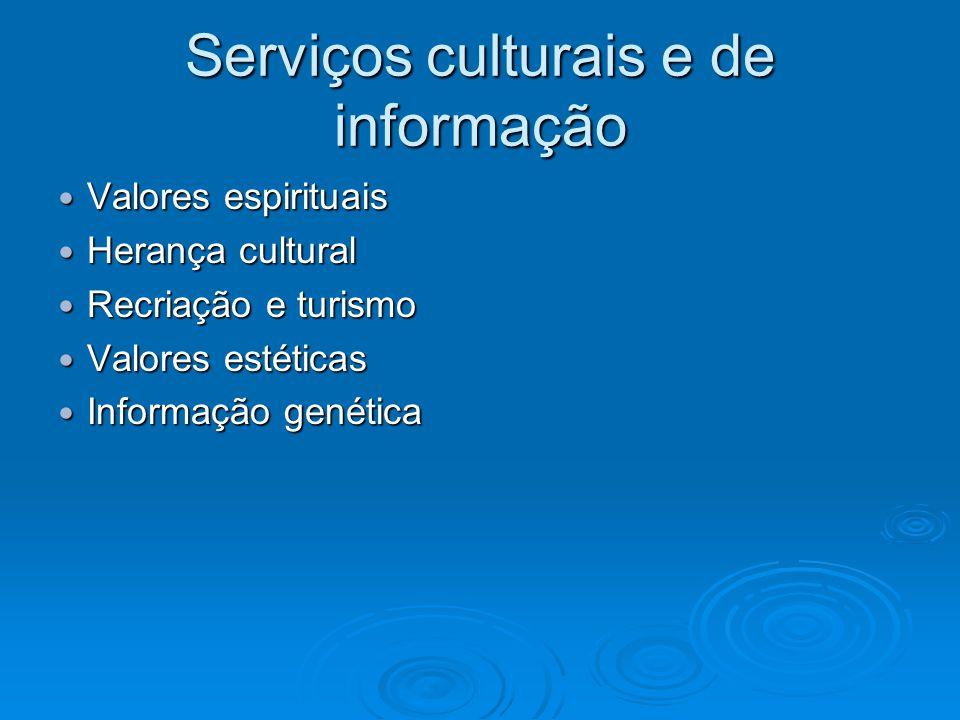 Serviços culturais e de informação Valores espirituais Valores espirituais Herança cultural Herança cultural Recriação e turismo Recriação e turismo Valores estéticas Valores estéticas Informação genética Informação genética