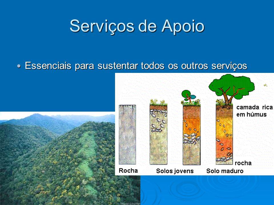 Serviços de Apoio Essenciais para sustentar todos os outros serviços Essenciais para sustentar todos os outros serviços