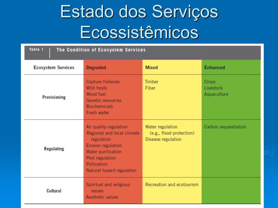 Estado dos Serviços Ecossistêmicos