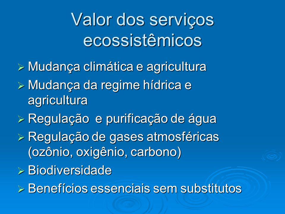 Valor dos serviços ecossistêmicos  Mudança climática e agricultura  Mudança da regime hídrica e agricultura  Regulação e purificação de água  Regulação de gases atmosféricas (ozônio, oxigênio, carbono)  Biodiversidade  Benefícios essenciais sem substitutos