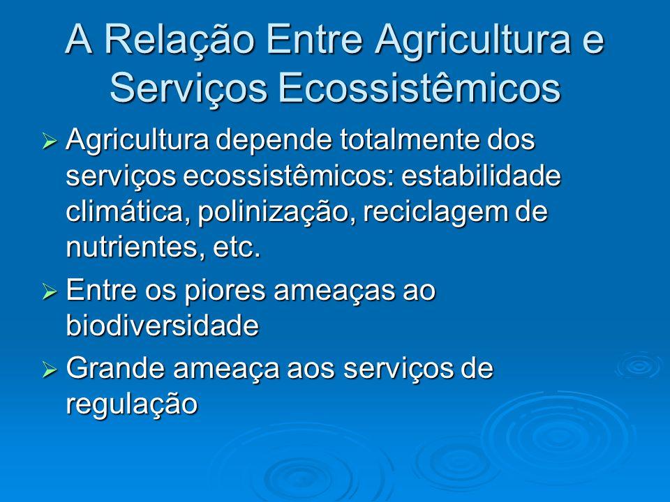 A Relação Entre Agricultura e Serviços Ecossistêmicos  Agricultura depende totalmente dos serviços ecossistêmicos: estabilidade climática, polinização, reciclagem de nutrientes, etc.