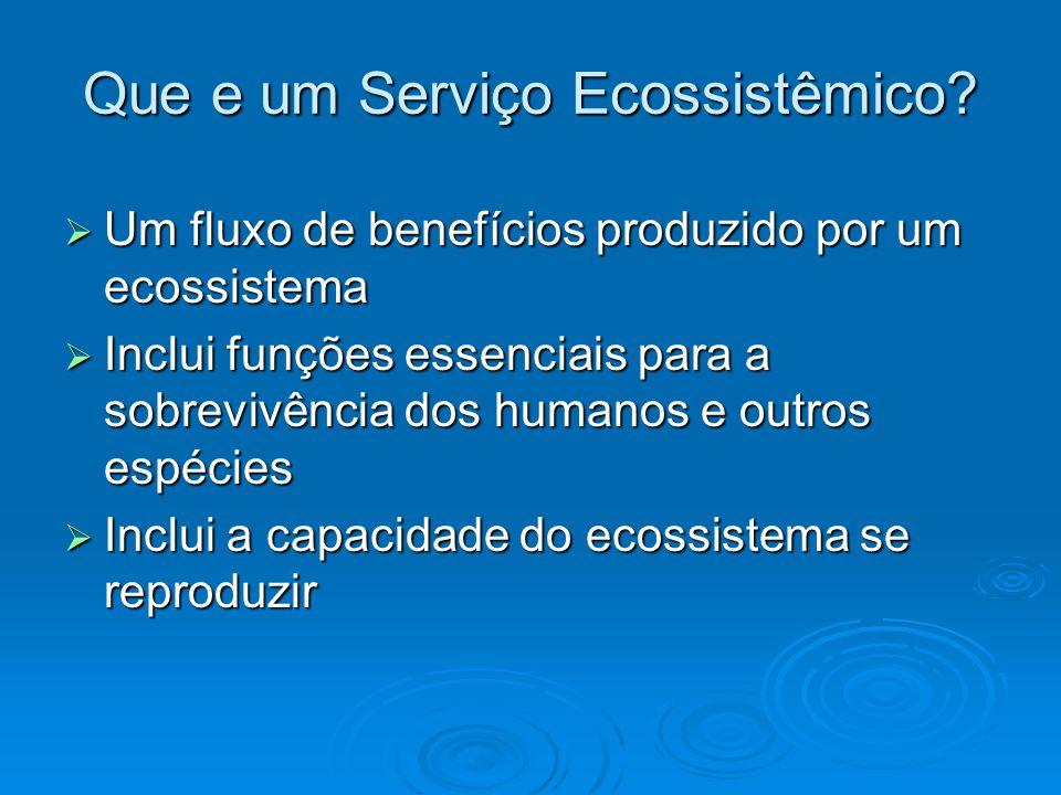 Que e um Serviço Ecossistêmico.