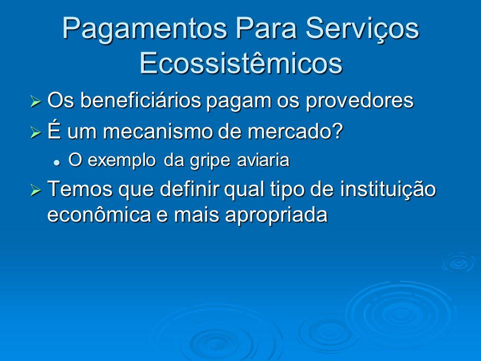 Pagamentos Para Serviços Ecossistêmicos  Os beneficiários pagam os provedores  É um mecanismo de mercado? O exemplo da gripe aviaria O exemplo da gr