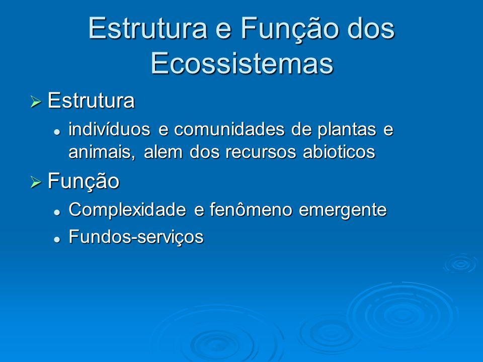 Estrutura e Função dos Ecossistemas  Estrutura indivíduos e comunidades de plantas e animais, alem dos recursos abioticos indivíduos e comunidades de