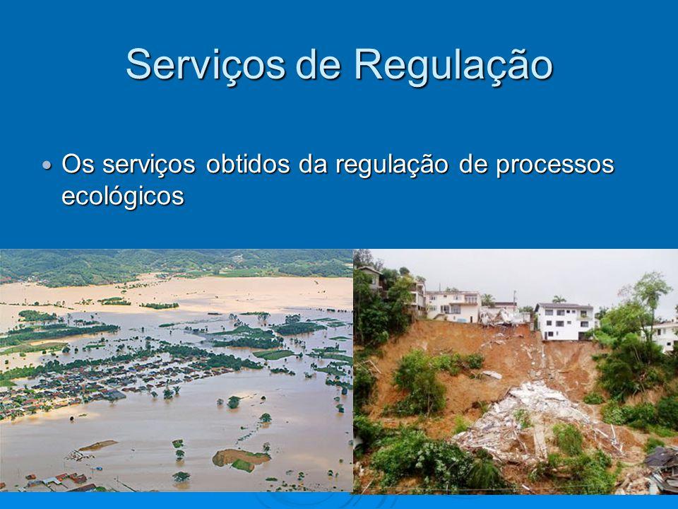 Serviços de Regulação Os serviços obtidos da regulação de processos ecológicos Os serviços obtidos da regulação de processos ecológicos