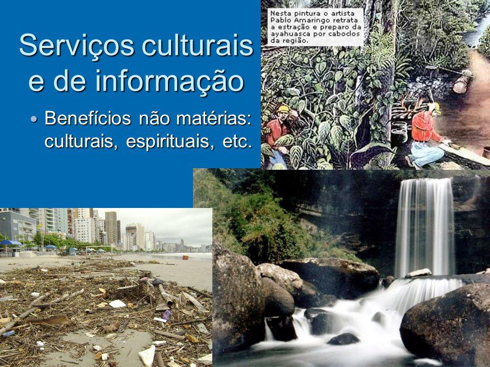 Serviços culturais e de informação Benefícios não matérias: culturais, espirituais, etc. Benefícios não matérias: culturais, espirituais, etc.