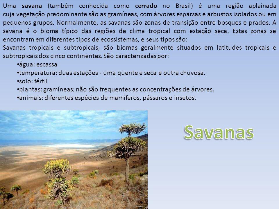 Uma savana (também conhecida como cerrado no Brasil) é uma região aplainada cuja vegetação predominante são as gramíneas, com árvores esparsas e arbus