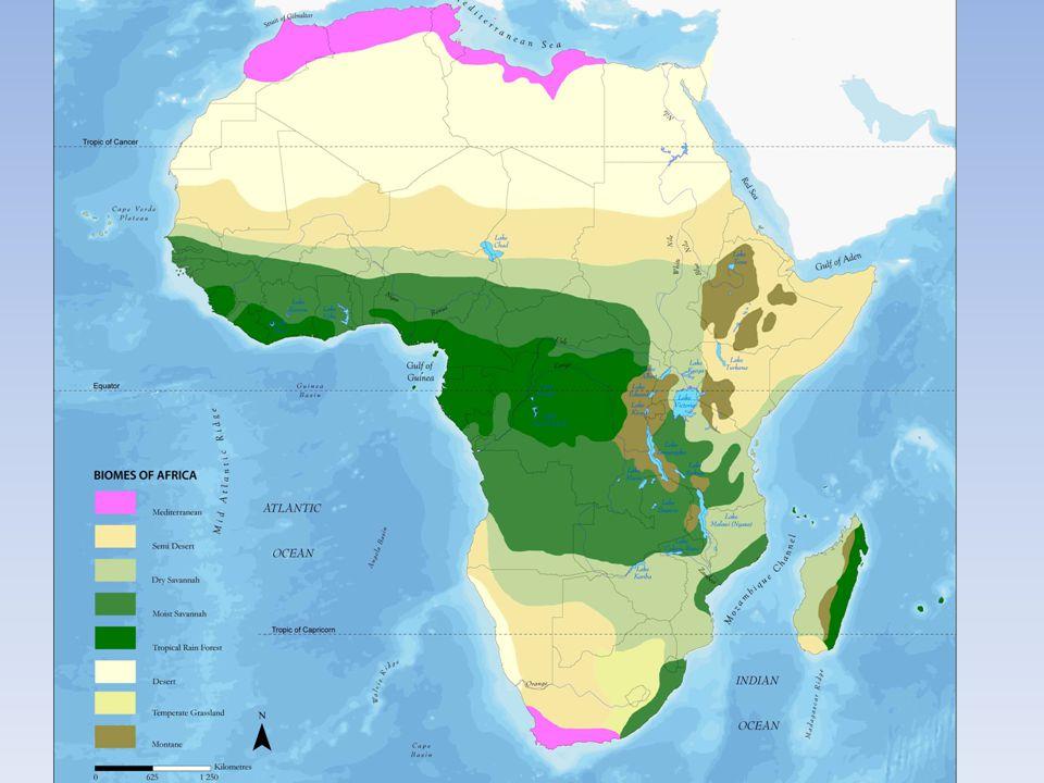 A cordilheira do Atlas é uma cadeia de montanhas no noroeste da África que se estende por 2400 km através de Marrocos, da Argélia e da Tunísia, e ainda inclui Gibraltar.