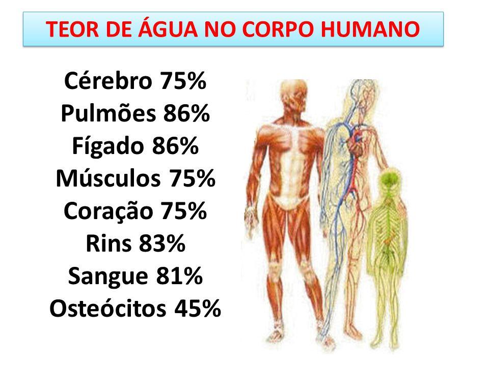 Cérebro 75% Pulmões 86% Fígado 86% Músculos 75% Coração 75% Rins 83% Sangue 81% Osteócitos 45% TEOR DE ÁGUA NO CORPO HUMANO