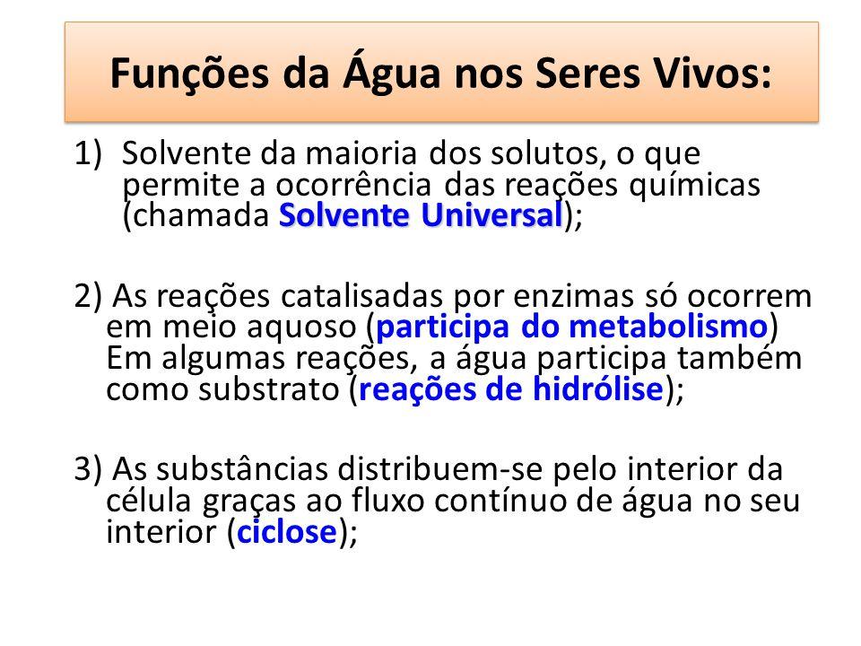Funções da Água nos Seres Vivos: Solvente Universal 1)Solvente da maioria dos solutos, o que permite a ocorrência das reações químicas (chamada Solven
