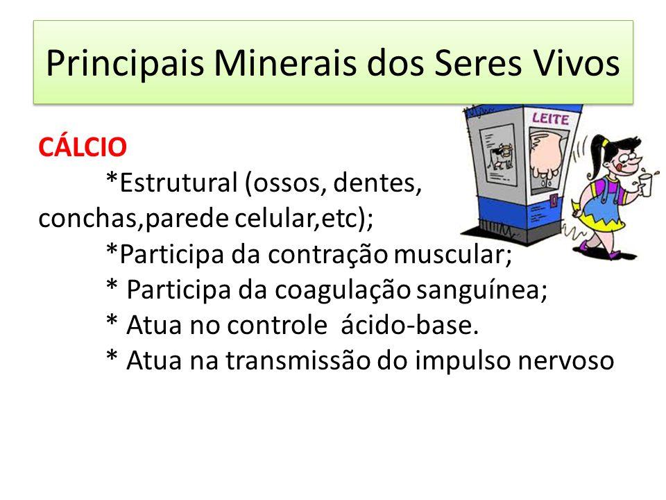 CÁLCIO *Estrutural (ossos, dentes, conchas,parede celular,etc); *Participa da contração muscular; * Participa da coagulação sanguínea; * Atua no contr