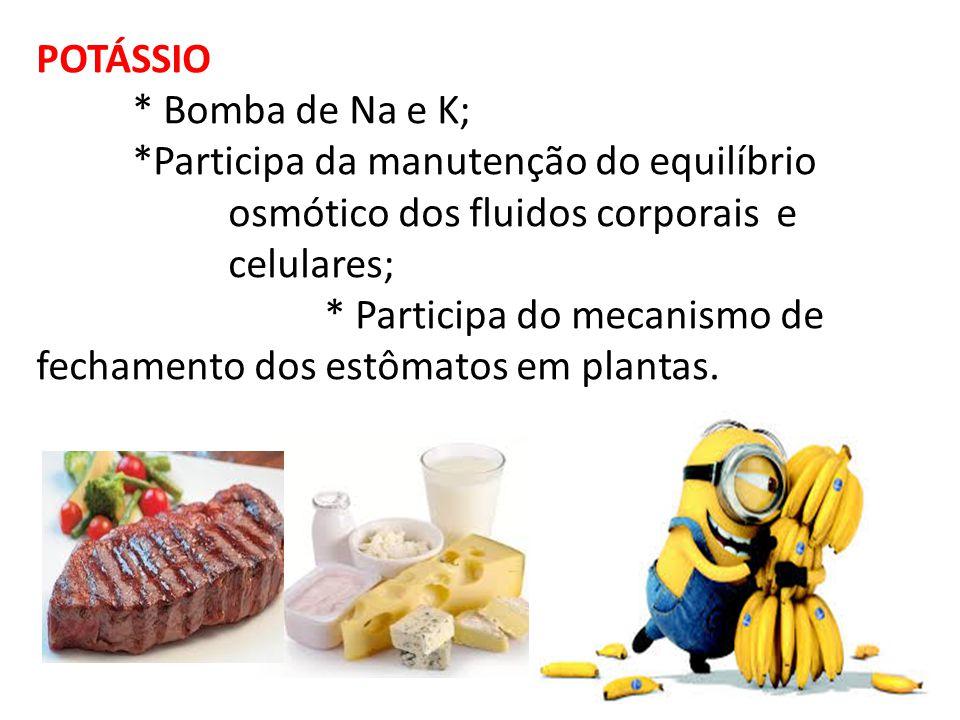 POTÁSSIO * Bomba de Na e K; *Participa da manutenção do equilíbrio osmótico dos fluidos corporais e celulares; * Participa do mecanismo de fechamento