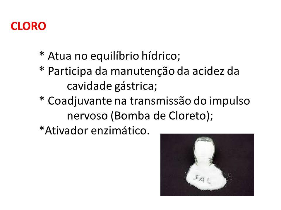 CLORO * Atua no equilíbrio hídrico; * Participa da manutenção da acidez da cavidade gástrica; * Coadjuvante na transmissão do impulso nervoso (Bomba d